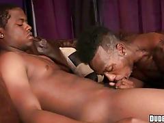 Black twink enjoying suck dick